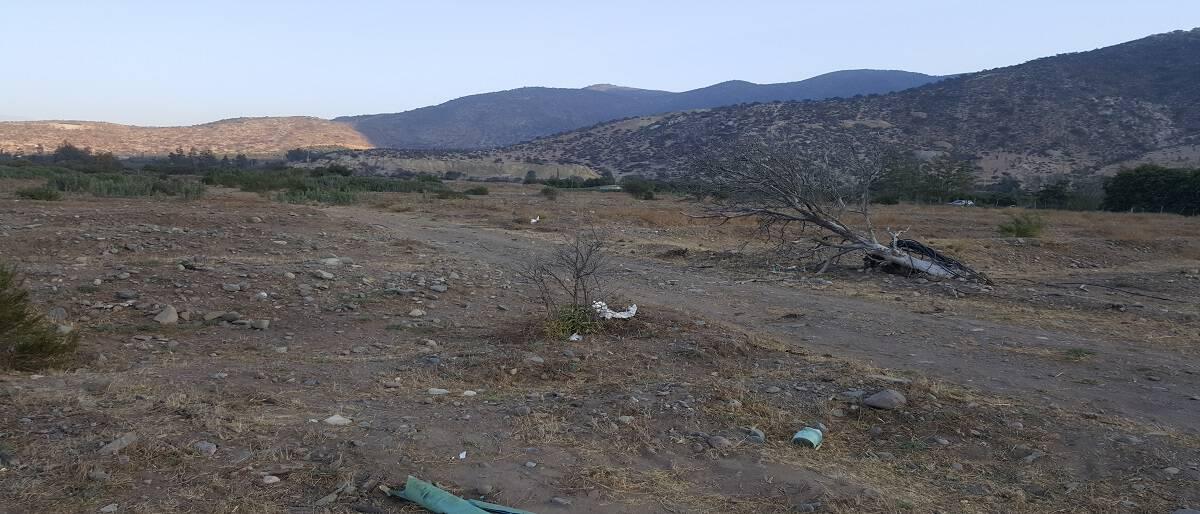 Plan de medidas de reparación y/o restauración de suelos
