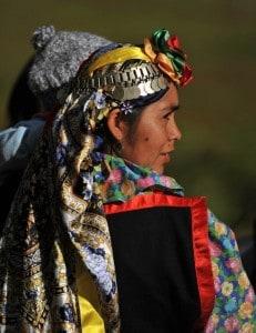 Participación Indigena