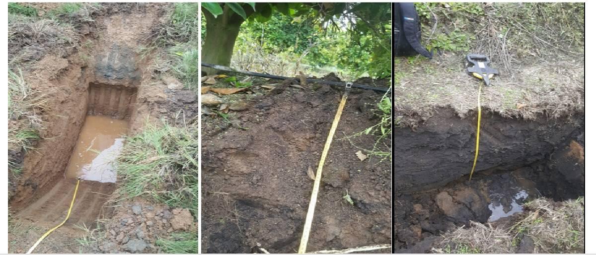 Informe agrológico y clasificación de suelos