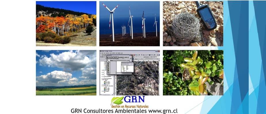 Asesoria y consultoria en medio ambiente